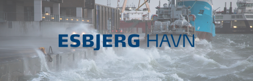 Esbjerg havn undervisningsforløb