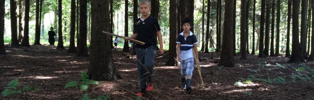 Foto af legende drenge i skov