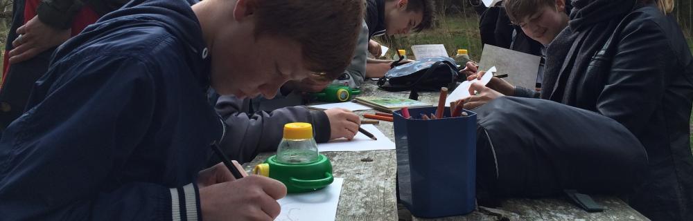 Elever studerer smådyr fra søen