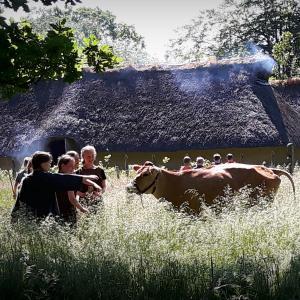 Elever i jeralderdragter ser på en ko