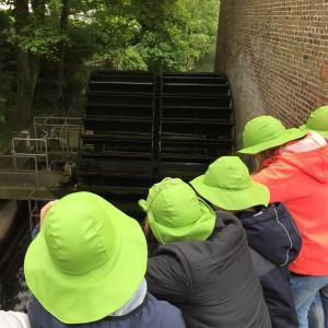 Elever ser på gammel vandmølle i Ribe