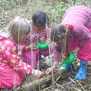 Elever finder insekter i skovbunden