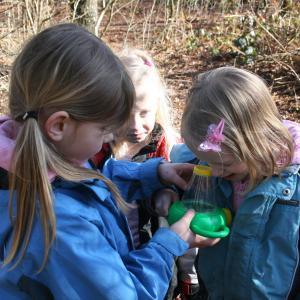 Børn ser på insekter i en lup